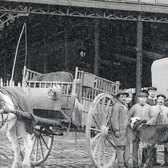 Marché aux bestiaux de La Villette