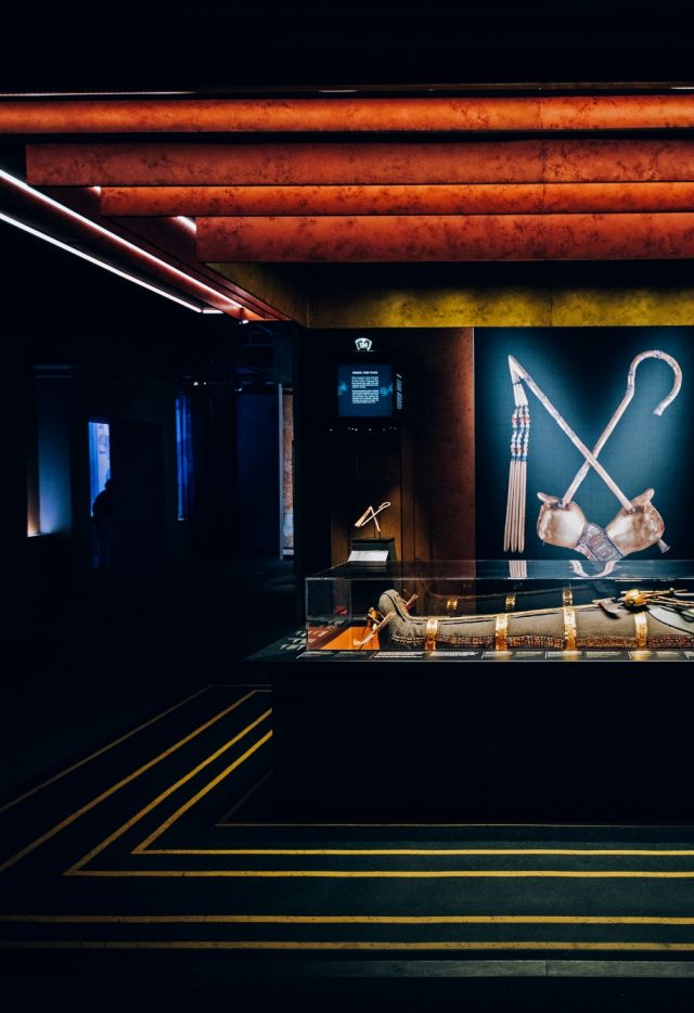 La salle de la Momie - Exposition Toutankhamon, le trésor du Pharaon