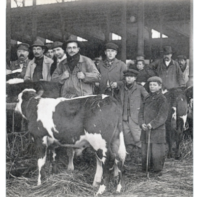 1er janvier 1867