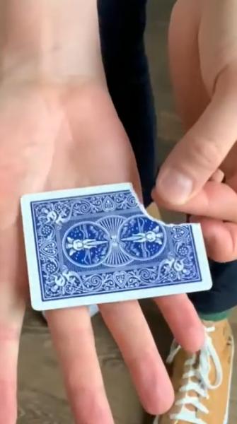 Les clips magiques de Thierry Collet