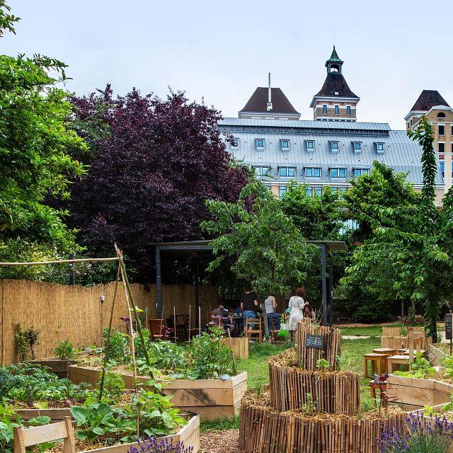 Les nouveaux jardins de la Villette - Jardin21 ©Bruno Delamain