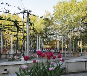 Les nouveaux jardins de la...