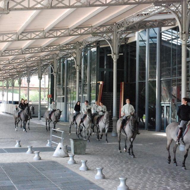 Accueil de l'académie équestre de Versailles