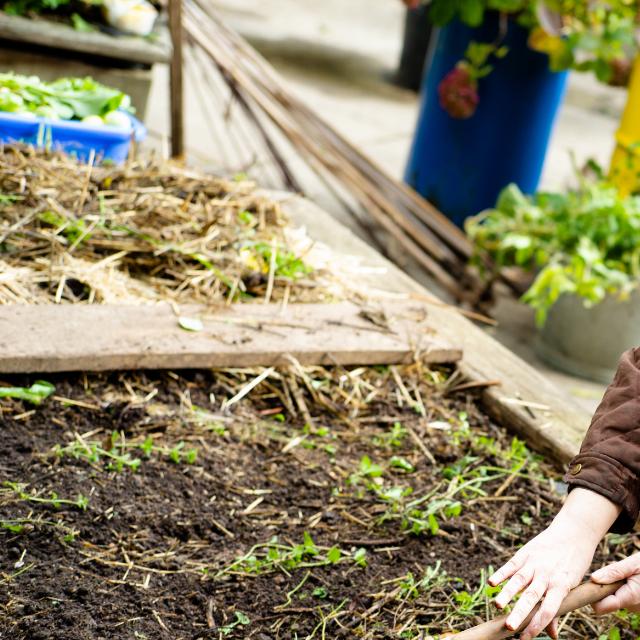 Atelier jardinage | EAC