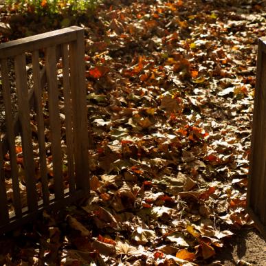 l'automne au Parc de La Villette